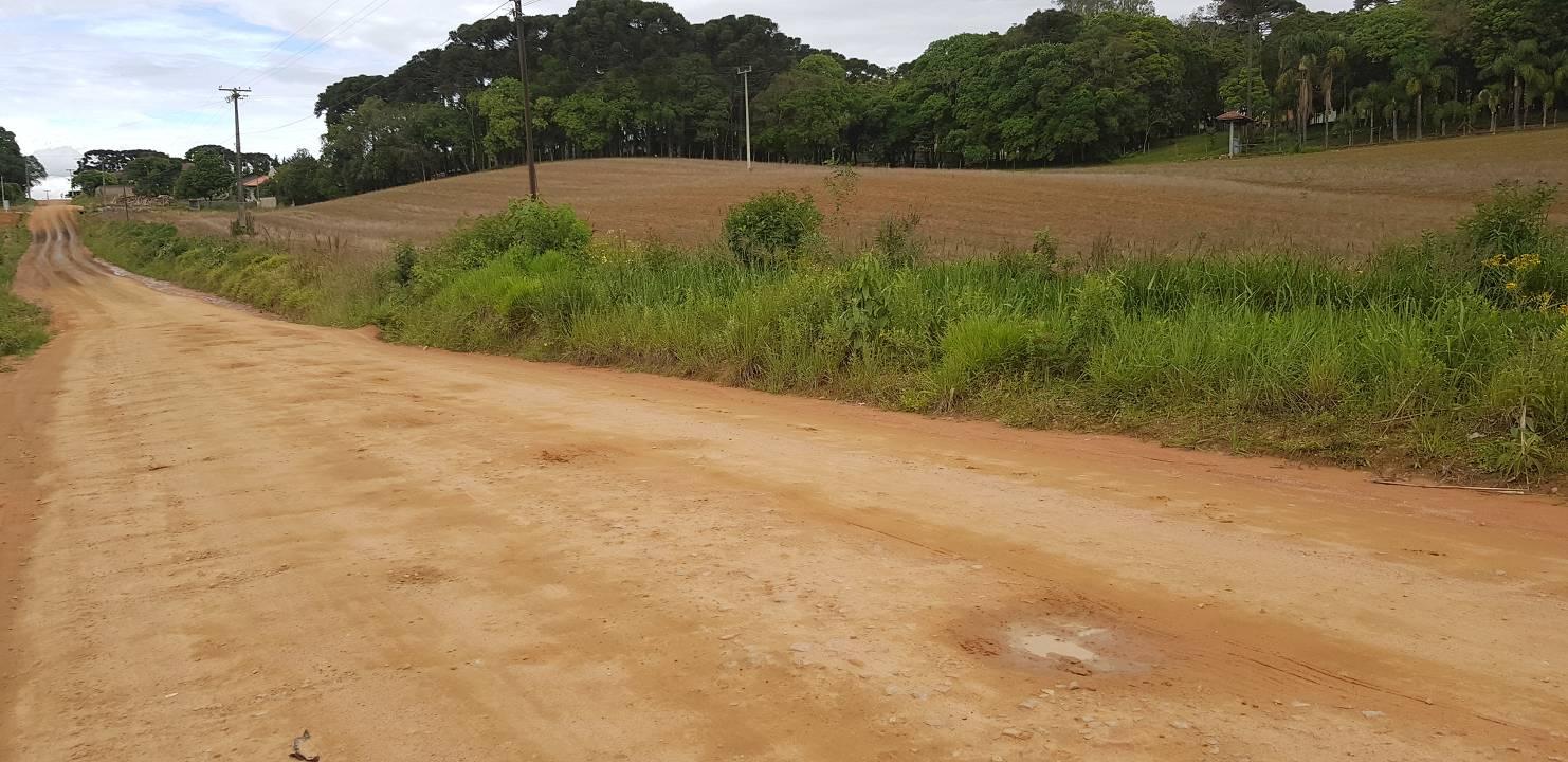 foto - Mandirituba - Zona Rural